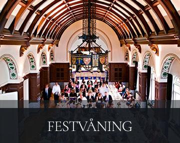 festvaning-thumb-04