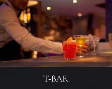 tbar-thumb-04